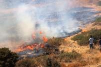 GÜMBET - Tarihi Değirmen Tepesi Alevlere Yenik Düştü