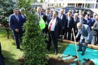 YEŞIL YOL - Bakan Veysel Eroğlu 'Yeşil Yolu' Değerlendirdi