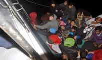 KONGO CUMHURİYETİ - Bodrum'da 58 Kaçak Göçmen Yakalandı