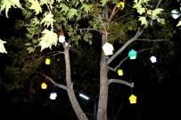 KUŞ YUVASI - Kuş Yuvası Şeklindeki Işıklandırmalar Büyüledi