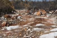 ORMAN İŞLETME MÜDÜRÜ - Mersin'de Yanan Orman Sahaları Yeşillendiriliyor