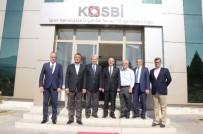 ZEYTİN AĞACI - İzmir'de 50 Bin Kişilik İstihdamla Ekonomi Şahlanacak
