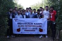 SÜLEYMAN TAPSıZ - Karaman'da Düzenlenen Elma Yetiştiriciliği Kampı Sona Erdi