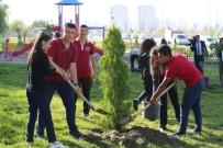 BEDEN EĞİTİMİ ÖĞRETMENİ - Konaklar Mahallesinde 500 Çam Fidanı Dikildi