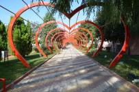 SARMAŞıK - Sevgi Yolu'na 7 Çeşit Sarmaşık Dikildi
