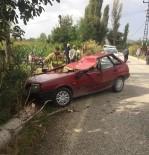 Seyir Halindeki Aracın Üzerine Ağaç Düştü Açıklaması 1 Ölü, 1 Yaralı
