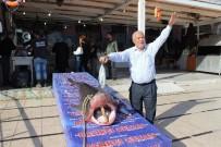 BILIM ADAMLARı - Köpekbalığı Kanser Hastalarına Şifa Olacak