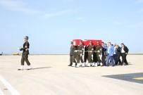 HATIPLI - Şehidin Cenazesi Ordu'ya Getirildi