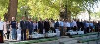 ZEYTİN AĞACI - Mut'ta 2'Nci Mut Zeytin Ve Zeytinyağı Sempozyumu Düzenlendi