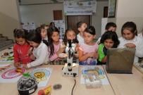 ANKARA ÜNIVERSITESI - Öğrenciler Böceklerden Korkmamayı Ve Doğa İle Bütünleşmeyi Öğreniyor