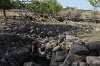 ŞEBEKE SUYU - Şebeke Suları Kesilen Köylüler, Kuyu Suyu İçmek İstemiyor