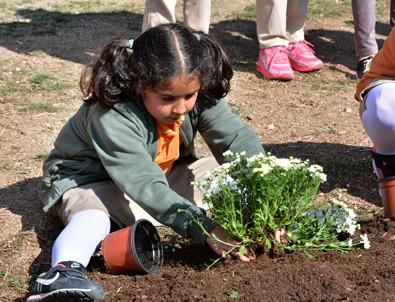 Toprak vatandır okul bahçelerinde…