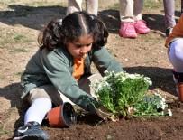 HAYVAN SEVGİSİ - Toprak vatandır okul bahçelerinde…