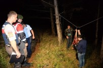 OSMANGAZI BELEDIYESI - Uludağ'da At Kesenlere Şok Operasyon