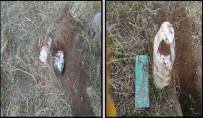KOMANDO - Tatvan Kırsalında Tespit Edilen Patlayıcılar İmha Edildi