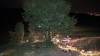 KÖRFEZ - Define Ararken Dinamit Patladı Açıklaması 1 Ölü, 2 Yaralı