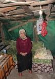 YAŞAM MÜCADELESİ - 'Devlet' Ananın Yürek Burkan Dramı