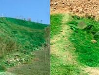 CHP - CHP'li belediyenin doğa anlayışı: Yeşile boyamak