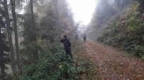 ORMANA - Mantar Toplarken Kaybolan Şahıs Aranıyor