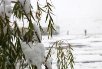 KAR YAĞıŞı - Ardahan'da Kar Yağışı