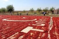AY YıLDıZ - Bayrak Ve Türkiye Sevgisini Biber Sergisine İşledi