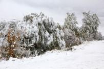 GÜZELYAYLA - Erzurum Kar Yağışıyla Birlikte Beyaz Örtüye Büründü