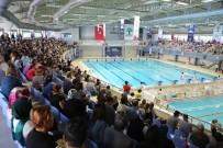 TÜRKİYE YÜZME FEDERASYONU - Minik Şampiyonlar Şehitkamil'de Geleceğe Kulaç Attı