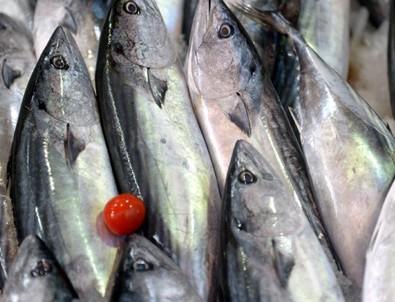 Olumsuz hava şartları balık fiyatlarını yükseltti