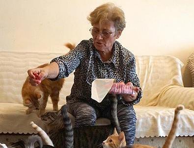 80 kedisiyle kiralık ev arıyor