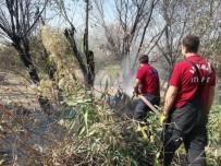 ANIZ YANGINI - Anız Yangını Bahçeye Sıçradı