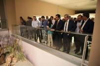 MOZAİK MÜZESİ - Jeotermal Kaynaklı Belediyeler Birliği Toplantısının Ardından