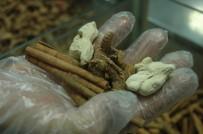 DÜŞÜNÜR - Mevsimsel Hastalıklara Ve Tedavi Yöntemlerine Dikkat