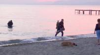 ZEYTINLI - Edremit'te Boğulma İhbarı, Sahil Güvenlik Ekiplerini Harekete Geçirdi