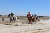 YARIŞ ATI - Konya'da Mahalli 24. Geleneksel Safkan Arap Ve İngiliz At Yarışları Gerçekleştirildi