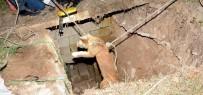KARAKUYU - Kuyuya Düşen Köpek AFAD Ekiplerince Kurtarıldı