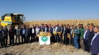 KAYSERİ ŞEKER FABRİKASI - Danelik Mısırın Yurt İçinden Teminine Kayseri Pancar Kooperatifi Desteği