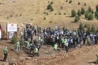 ORMAN İŞLETME MÜDÜRÜ - Mardin'de 15 Temmuz Şehitleri Anısına Hatıra Ormanı Oluşturuldu