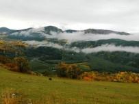 SONBAHAR - Posof'ta Sonbahar Bir Başka Güzel
