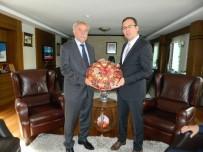 FUTBOL SAHASI - Spor Toto Doğanşehir'de Yatırım Yapacak