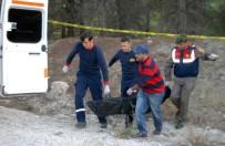 TÜRKIYE FINANS - Banka müdürü ormanlık alanda ölü bulundu