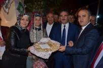 ŞEHIT - Gemlik Zeytin Festivali Başladı