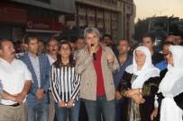 HDP'li Lezgin Botan hakkında fezleke