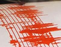METEOROLOJI - Japonya'da deprem