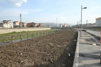 REHABILITASYON - Ordu'da Hafriyat Toprağı Çevre Düzenlemede Kullanılıyor