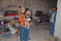 YAŞAM MÜCADELESİ - Terörden Kaçtı, Ekmek Parasını Çıkarmaya Çalışırken Öldü