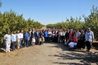 TARıM İŞLETMELERI GENEL MÜDÜRLÜĞÜ - TİGEM Çukurova Çiftliği'nde Dünya Çiftçi Kadınlar Günü Kutlaması