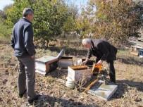 TRAFİK YOĞUNLUĞU - Hisarcık'ta 30 Arı Kovanı Yakıldı
