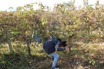 İTİRAF - Minik Irmak Cinayetinde Aranan Çapa Bulundu İddiası
