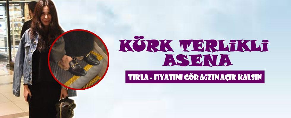 Asena, Engincan'ın izinde!
