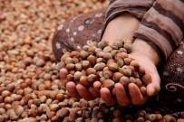 EKONOMİ BAKANLIĞI - İtalyan Tarımcılar Derneğinin 'Fındık' Açıklamasına Tepki